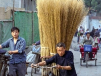 Cycling  Ch04_C0606 Chengdu. Brooms. : Chengdu, China, Countries & Places, Cycling, Neg.CLR, People, Profession